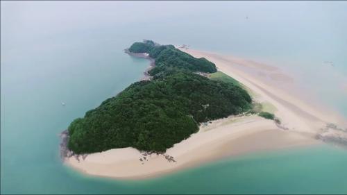 은빛 모래 해변이 아름다운 사승봉도_자연愛산다 11회 예고