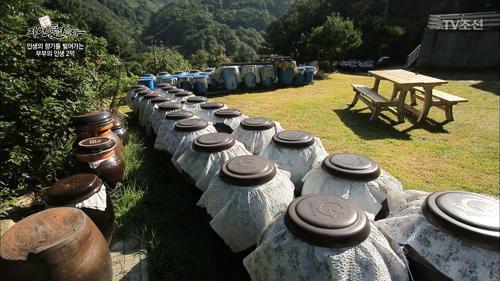 깊은 산속에 사는 발효 여왕!