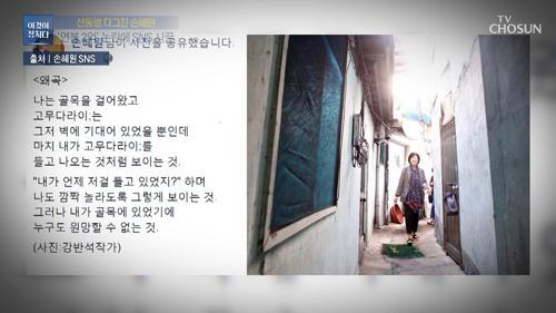 역풍 맞은 손혜원, 페북에 올린 의미심장 글