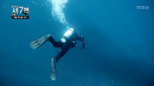 최근 변해간다는 독도의 해양상태, 어떻게 변한 걸까?!