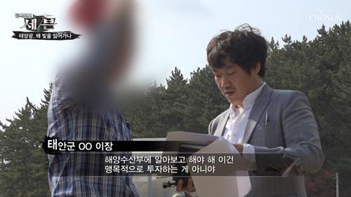 법을 위반하면서까지 '태양광 사업' 추진?