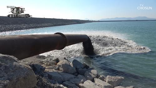 바다에 있는 '펄'을 간척사업에 쓰는 이유는 ?