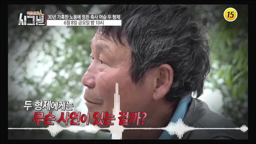 30년 가혹한 노동에 멍든 축사 머슴 두 형제_시그널 28회 예고