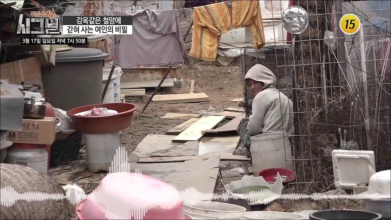 감옥같은 철망에 갇혀 사는 여인의 비밀_시그널 65회 예고 이미지